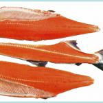fish_filleting_machine_ltype02