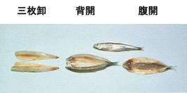 fish_filleting_machine_stype02